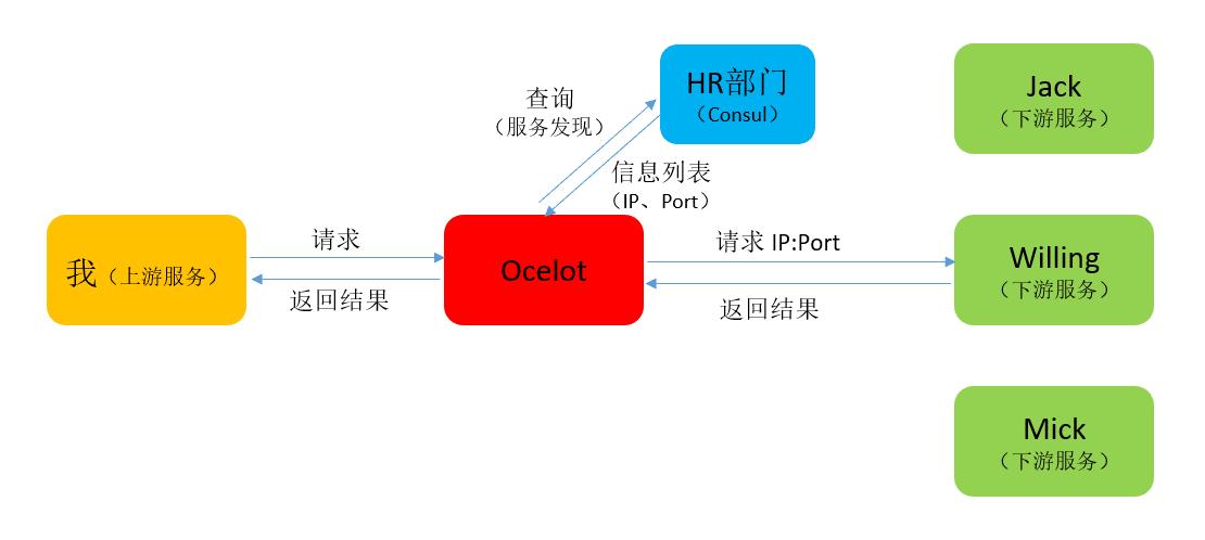 Ocelot_014_consulocelot