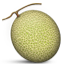 :melon: