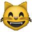 :smile_cat: