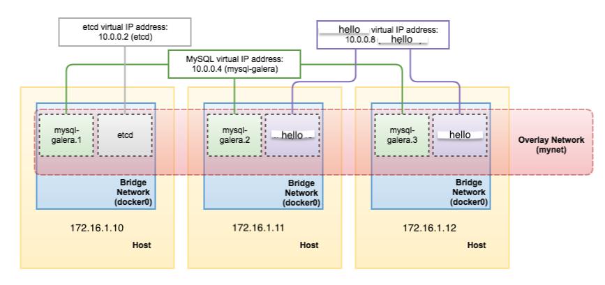 swarm network model
